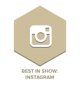 Best in Show: Instagram